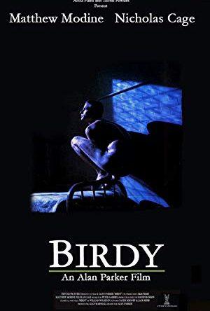 Birdy (15)